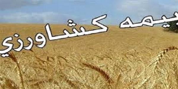 کشاورزان هرسینی درخصوص بیمه دامها و محصولات زراعی وباغی اقدام کنند