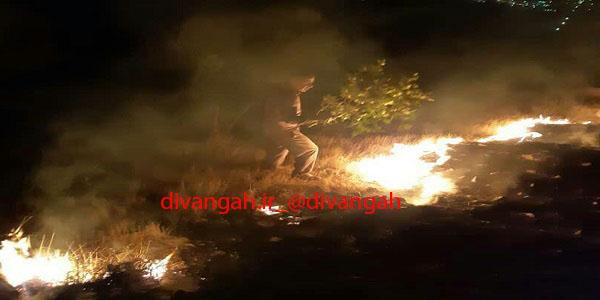 آتش سوزی ارتفاعات حفاظت شده بیستون پس از 24ساعت مهار شد
