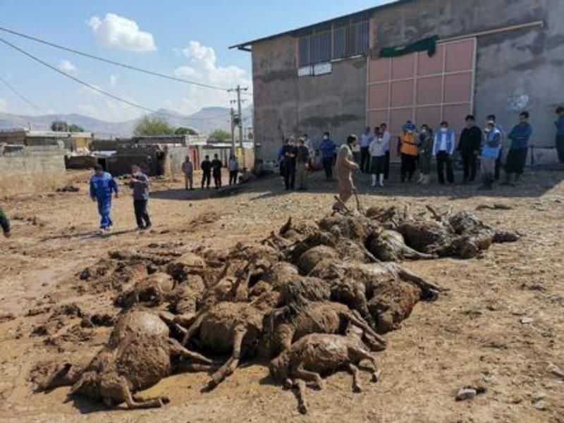 عدم تحقق وعده های دولت به سیل زدگان روستاهای هرسین/ بلاتکلیفی مردم سیل زده پس از گذشت 9ماه